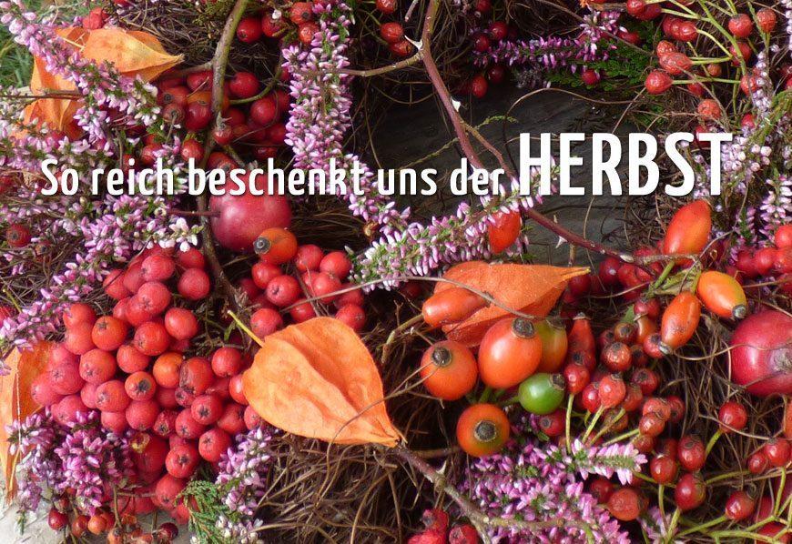 kundenzeitschrift-10-2016-herbst