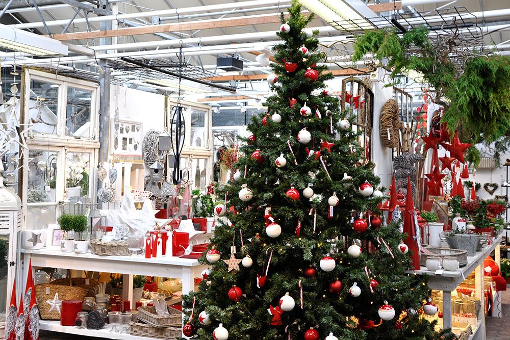 blumen-zentru-hoppe-uelzen-weihnachtsausstellung